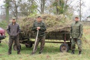 У парку села Омельне Ківерцівського району посадили 500 лип