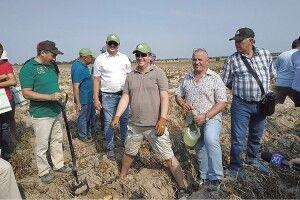 Волинські картоплярі замахнулися накрохмальний завод (ФОТО)