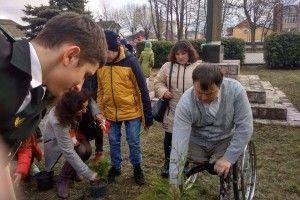 В Маневичах висадили алею на честь загиблих Героїв (Фото)
