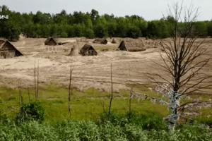 Фільми «Пофарбоване пташеня», знятий на Волині, можна переглянути онлайн