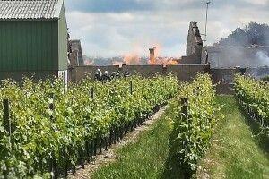 Непоправні збитки: пожежа знищила 250 тисяч літрів коньяку
