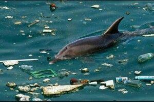 Експерти: «Чорне море небезпечне для здоров'я»
