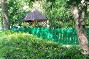 Як лісівники Горохівщини бережуть унікальний «Сидоруків парк»