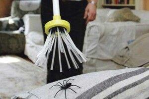 Щоб позбутися павуків удомі!