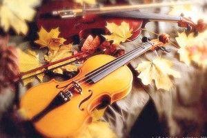 Розгублені між осіннім листям ноти