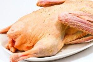 Рівненське господарство планує експортувати гусяче м'ясо до Європи