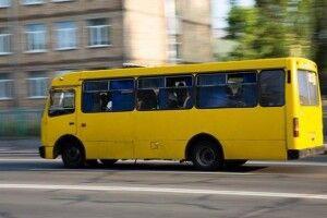 Мікрорайон Вишків буде забезпечено громадським транспортом