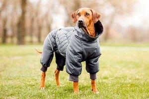 Погода на середу, 22 вересня: куртку вдягайте з тепліших