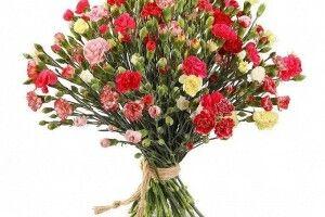 Червоні троянди – то справжня любов: які кому квіти дарувати