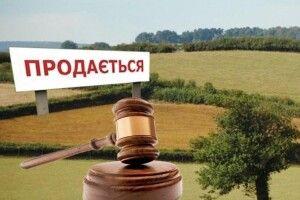Які загрози принесе  українцям дозвіл  на продаж землі іноземцям