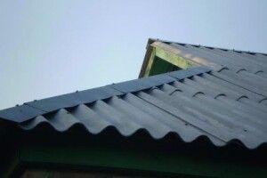 На Волині обікрали викладачку вишу - злодій заліз через дах