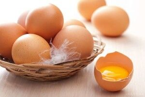 Протягом пів року українські кури знесли 8,6 мілярда яєць