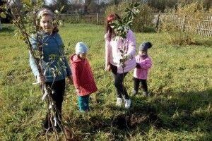 У 20 селах Любомльщини висадили молоді садки