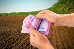 Верховна Рада під вигуки «Ганьба!» дозволила продаж землі