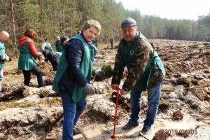 На Любешівщині ліс відновлювали усім старостинським округом