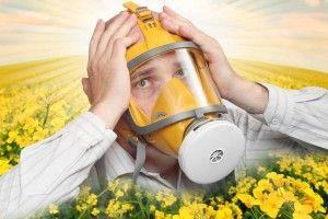 Алергія зачепить і Волинь