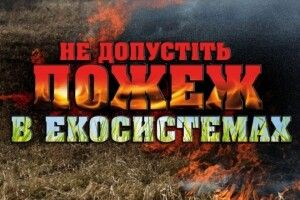 На Горохівщині у вогні загинув пенсіонер