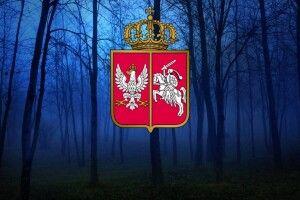 Польські повстанці проводили огляд військ під Черевахою