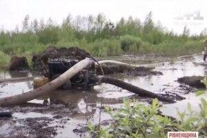 Мешканця Волині засудили за незаконне видобування бурштину
