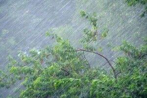 Оце так першотравень: надвечір українців попередили про подальше погіршення погодних умов