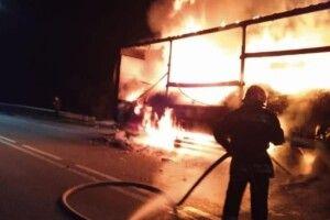 Біля Зеленого гаю згоріла вантажівка, яка везла алкогольні напої