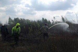 У Камінь-Каширському районі триває ліквідація пожежі на торфовищі (ВІДЕО)