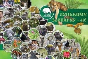 Луцький зоопарк вирішив відзначити своє 40-річчя Святом гарбуза