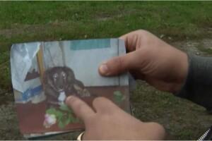 Українка повернула собі пса через 11 років після зникнення