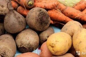 В Україні дешевшають картопля, морква та буряки