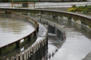 На очисних спорудах під Луцьком втопилася людина