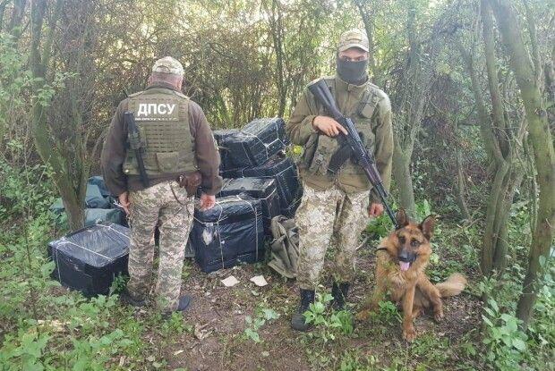 На Волині прикордонники зруйнували плани контрабандистів перемістити сигарети до країн ЄС (Фото)