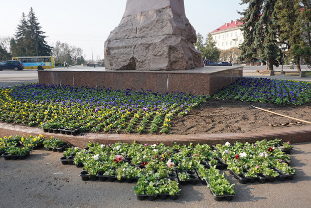 Чим сьогодні у Луцьку прикрасили пам'ятник Тарасу Шевченку (Фото)