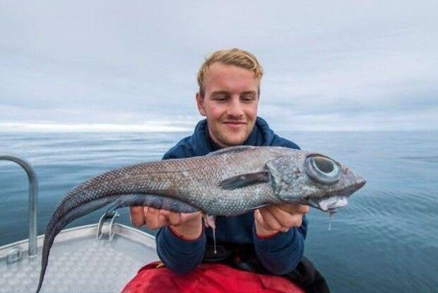 Рибалка упіймав рибу-монстра