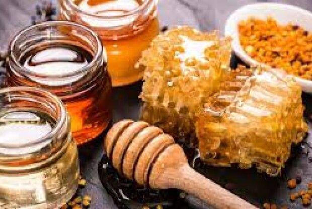 Україна домовилась з Китаєм про експорт ріпакового шроту і меду