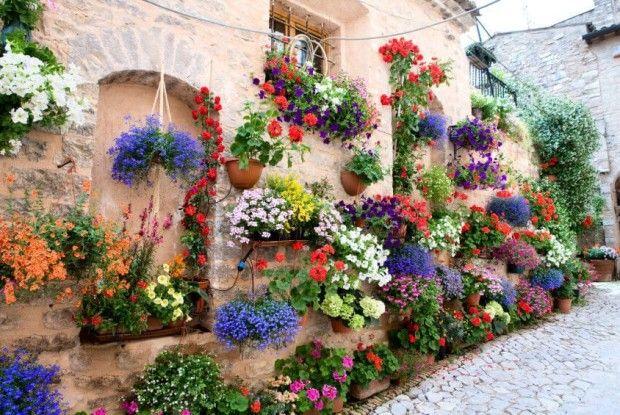 Рівняни просять владу потурбуватися про висадження квітів на вулицях міста ще з весни