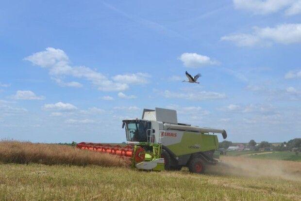 Волинь аграрна: 1 мільйон тонн картоплі, 1 мільйон гектарів землі, 1 мільйонн тонн зерна