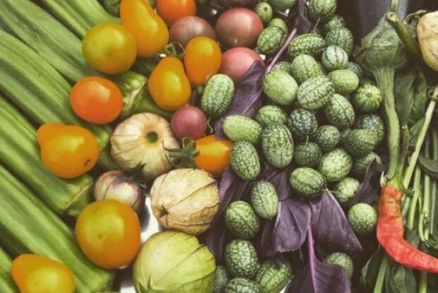 Українські аграрії переходять на екзотичні овочі