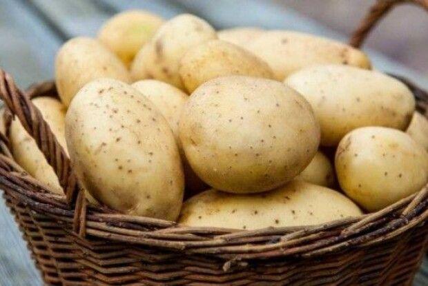 У жовтні Україні оновила рекорд з імпорту картоплі