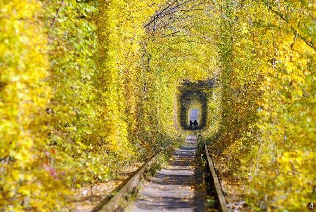 Найромантичніше місце Рівненщини – Клеванський тунель кохання