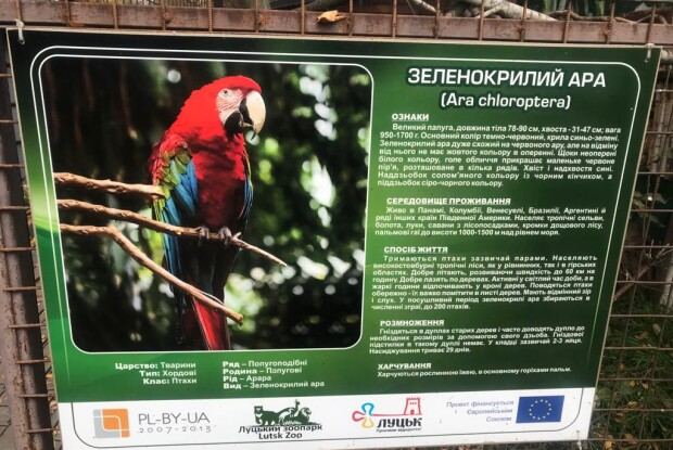 У Луцькому зоопарку вкрали папуг ара