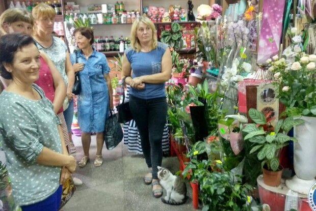 Красиво і прибутково: заробіток можна знайти в галузі вирощування квітів