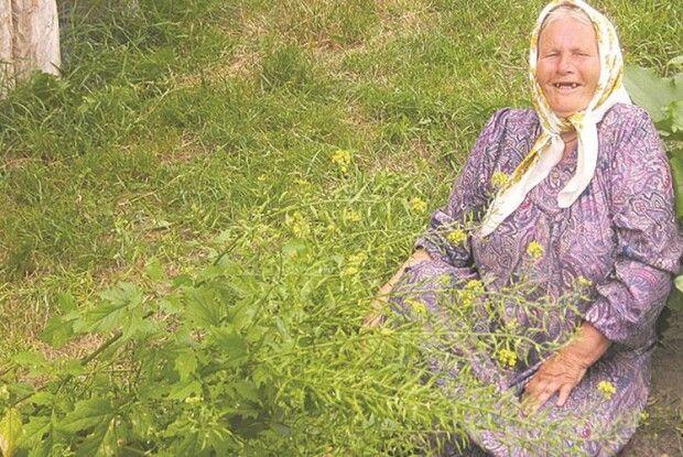 Волинська баба Марія, яка неходить 28років, іягоди збирає, ігриби