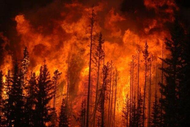 Сотні людей евакуювали з готелів та пляжів Греції через лісові пожежі, що вирують по всій країні
