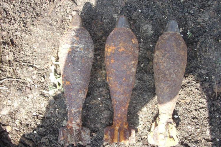 На Поліссі, як гриби після дощу, виростають… боєприпаси