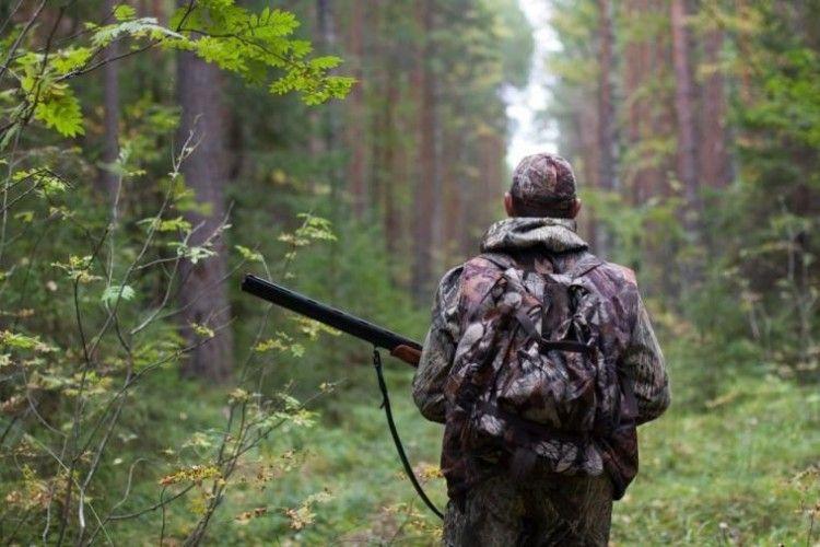 На Рівненщині роздають мисливські угіддя
