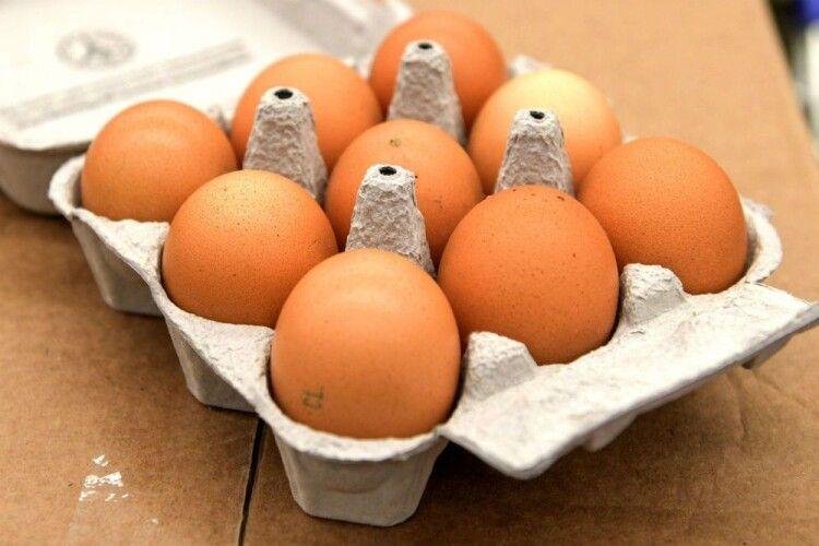 Зеленського просять заборонити недолітр молока і дев'яток яєць