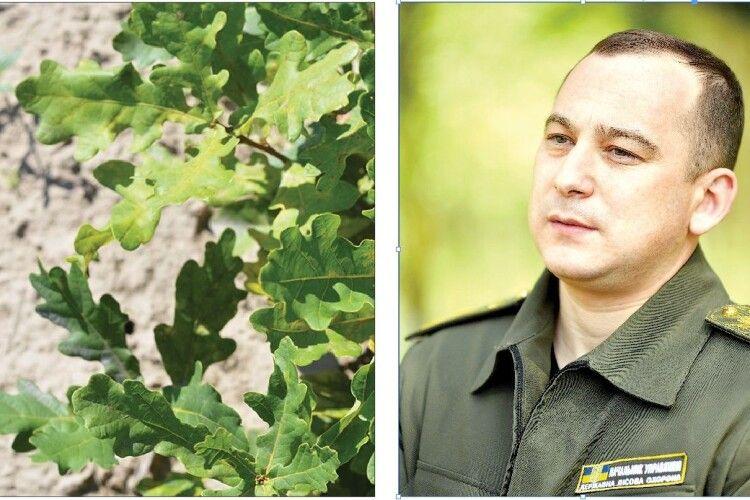 «На Волині зарік можемо створювати понад тисячі гектарів нових лісів», – Олександр Кватирко