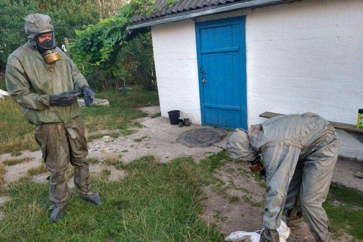 На Рівненщині бійці ДСНС знешкодили кубло шершнів (Фото)