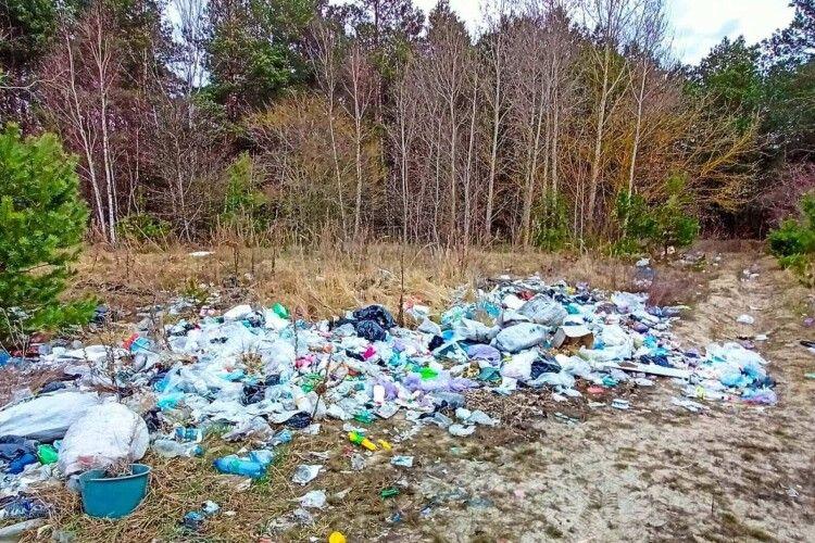 Волинський ліс перетворили на смітник (Фото)