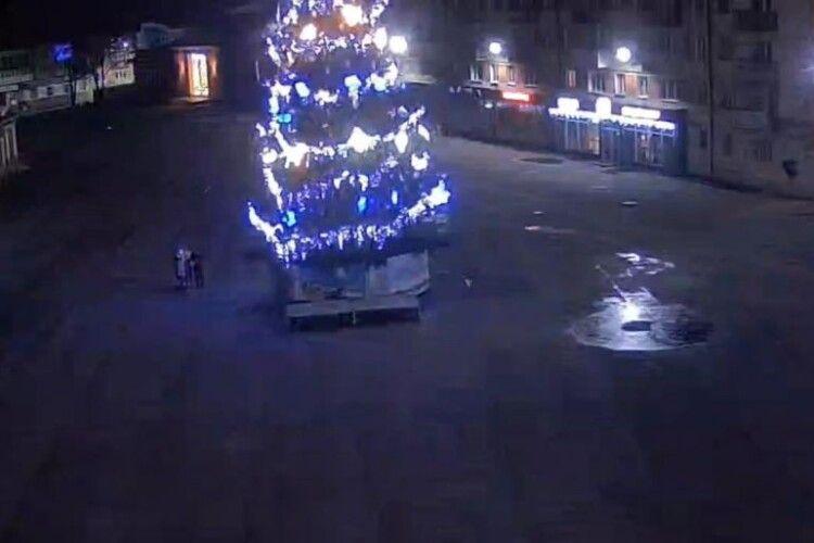 У місті на Волині молодик виліз на головну новорічну ялинку (Відео)